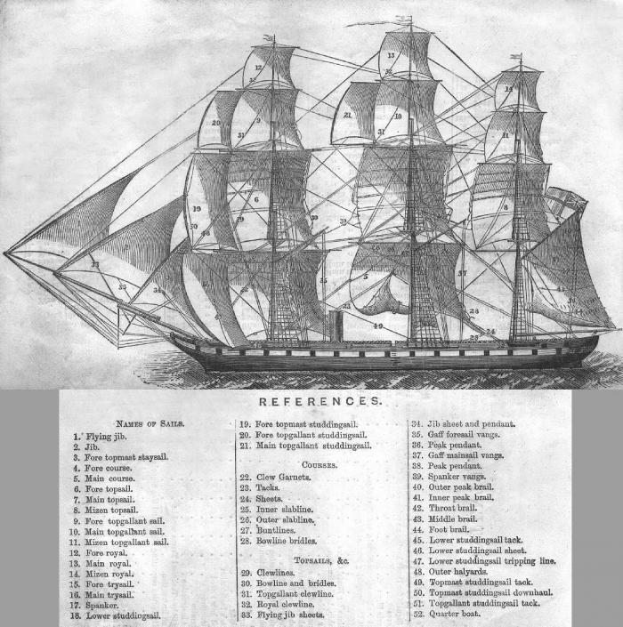 Robyn - Sails